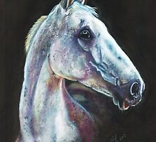 Desert Orchid by Jane Smith