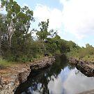 Townsville - Australia by Karen Stackpole