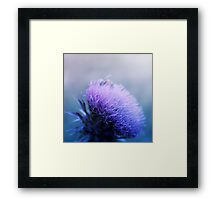 Bee-utiful  Framed Print