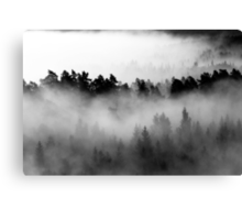 25.8.2013: Morning at Aulanko II Canvas Print