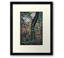 Strong Enough to Hold You Framed Print