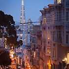 Transamerica Pyramid by dingobear