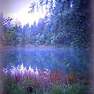 The Pond at Dusk by TrendleEllwood
