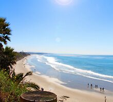 Swami's Beach, Encinitas, CA by Janece Moment