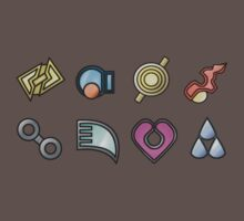 The Hoenn Gym Badges by zblues