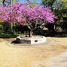 Tree Of Purple by amak