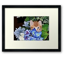 Safe! They'll never see me here! Framed Print
