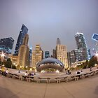 Cloud Gate (The Bean) and the Chicago Skyline by dingobear