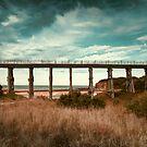 kilcunda bridge victoria by Melissa Dickson