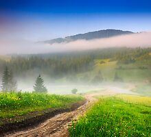 crossroads in the morning mist in mountains by pellinni