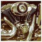 96 Cubic Inches by Linda Lees