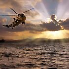 Sea King by James Biggadike