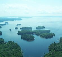 Sebago Lake From The Air by William Brennan