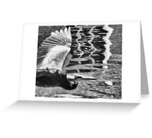 Between roost Greeting Card