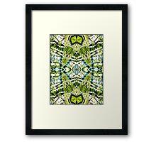 Aquatic Lace 18 Framed Print