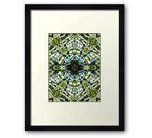 Aquatic Lace 20 Framed Print