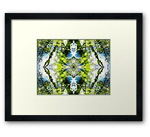 Aquatic Lace 21 Framed Print