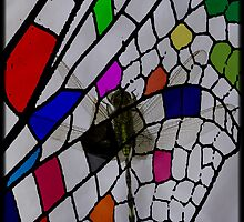 6_10_05_P1230065_Dragon_Fly_Pattern_3 by balipatterns