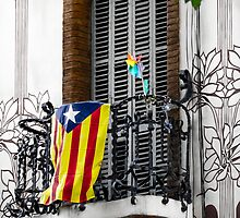 Catalonia Flag  by Sotiris Filippou
