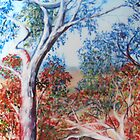 The strathbogie ranges by Jill Camilleri