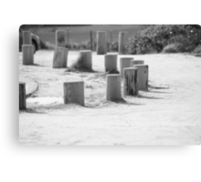 Black and White Stump Canvas Print