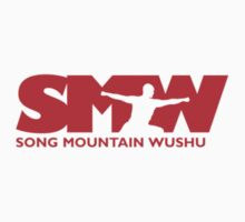 Song Mountain Wushu by Chris Serong