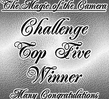 top five challenge, the magic of the camera by LoneAngel