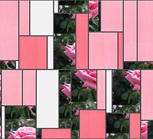 Pink Roses in Anzures 6 Art Rectangles 9 by Christopher Johnson