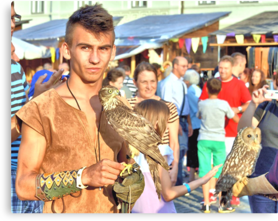 Falcon and Falconer  by ivDAnu