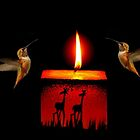 CANDLE LIGHT DANCE~ by RoseMarie747