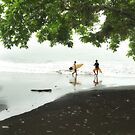 west java surfers by wellman