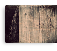 Vintage Barn Vine black and white rustic barn photography Canvas Print