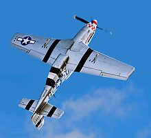 "P-51D Mustang 44-13521/5Q-B G-MRLL ""Marinell"" Looping by Colin Smedley"