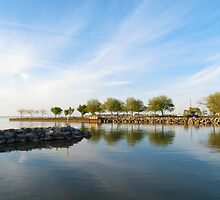 Shoreline Park by SRowe Art