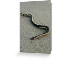 Sea Snake on a Beach Greeting Card