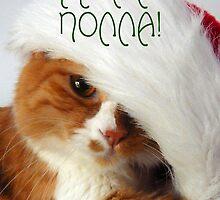 Greek Greeting - Christmas Cat in Santa Hat by MoMoCards