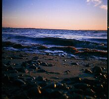 Chula Vista Bay (Lomo) by vm campos