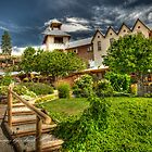 Hillside Winery - Penticton by Trish  Hooker