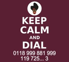 Keep Calm and Dial 0118 999 881 999 119 725... by ottou812