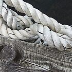 Wood and Rope by Monnie Ryan