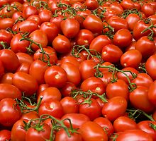 Tomatoes by Gabrel