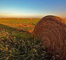 Hay in the Field by JohnDSmith