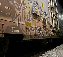 Train Graffiti by Maestro Hazer