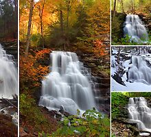 Erie Waterfall In Every Season by Gene Walls