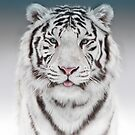 White Tiger by Cliff Vestergaard