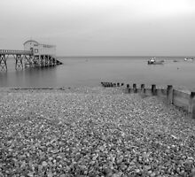 Selsey Lifeboat Pier and Beach by Matthew Floyd