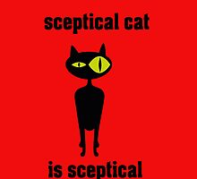 sceptical cat by clasto