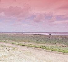 West Coast - A View by Carl Gaynor