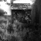 The witch house. by Matthew Trist