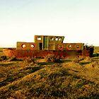 Noah's Ark - Blakeney Quay  by jamierickman